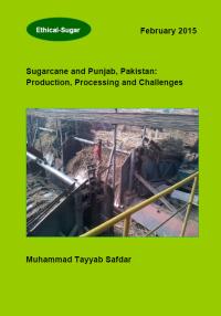 Sugarcane and Punjab Pakistan